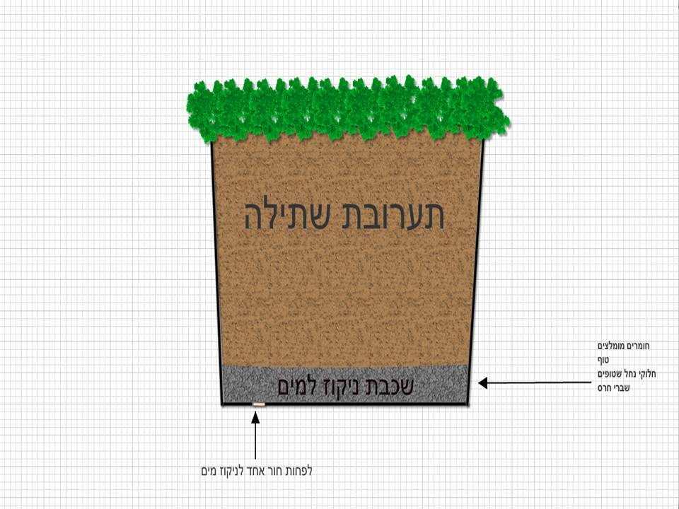 חפצים - עיצוב הבית הסוד להצלחת הגינון באדניות