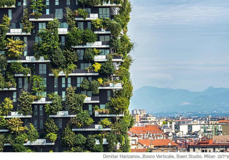 """חפצים - עיצוב הבית יערות אנכיים, שדות אנכיים,קירות ירוקים,  גגות-גינות ציבוריות.</br>למחסור בשטח בערים הגדולות יש פיצוי יצירתי – אסטטי, גואל בחמצן נקי ובצל מקרר,</br>ואף מאפשר """"להיות חקלאי על הקירות""""."""