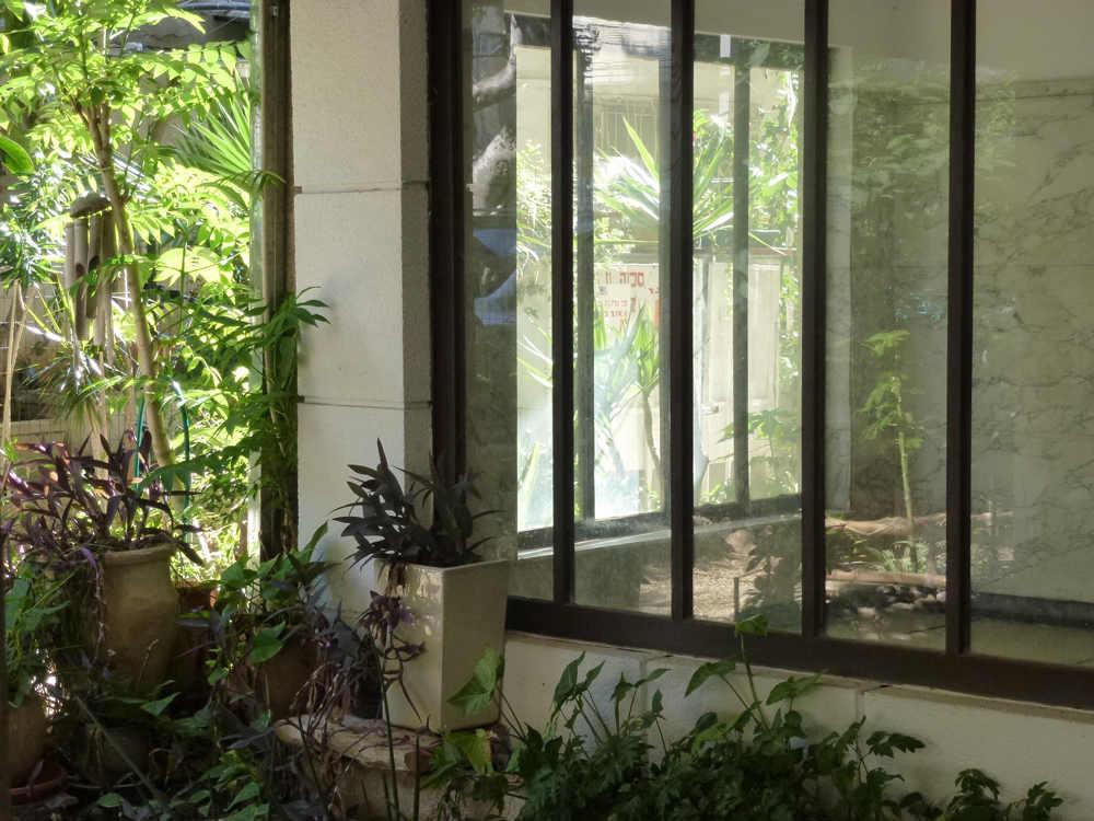 """חפצים - עיצוב הבית מה אנחנו יודעים על גינות המבואה בבתי דירות בעיר הלבנה – שנות ה- 30 בת""""א?</br>ד""""ר עדה ויטורינה סגרה</br>מומחית שימור נופי מורשת"""